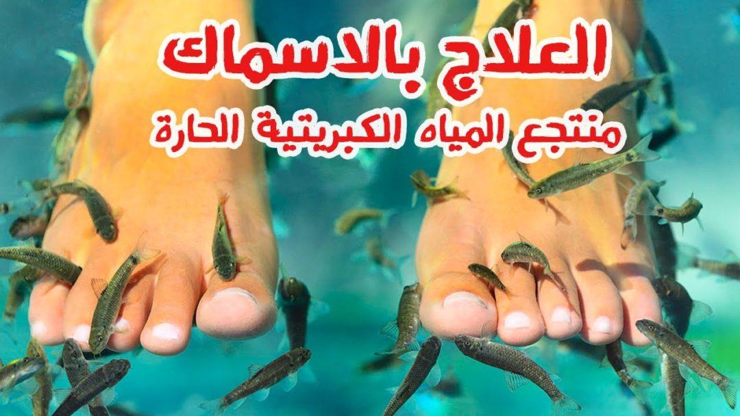 العلاج بالسمك | الصدفية | علاج الاكزيما الجلدية | مساج الاسماك الصدفية